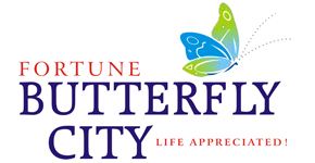 fortune butterfly city_290